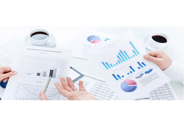 Website Analysis & SEO